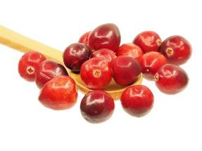 cranberry-1767425_640